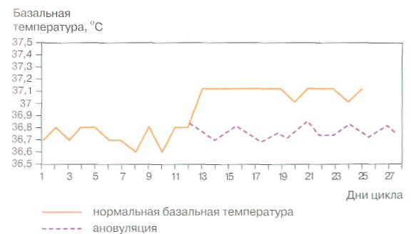 график базальной температуры при беременности: